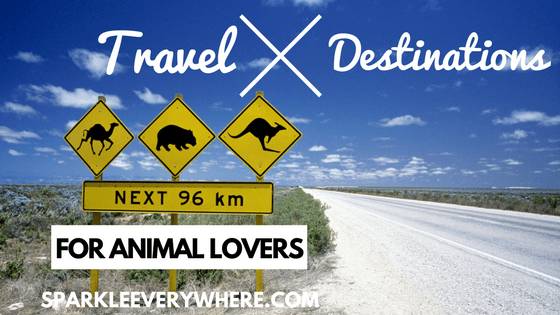travel destinations for animal lovers